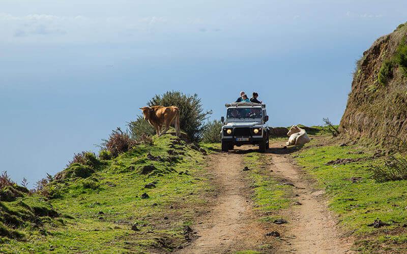 Madeira Jeep Safari - the Fascinating West