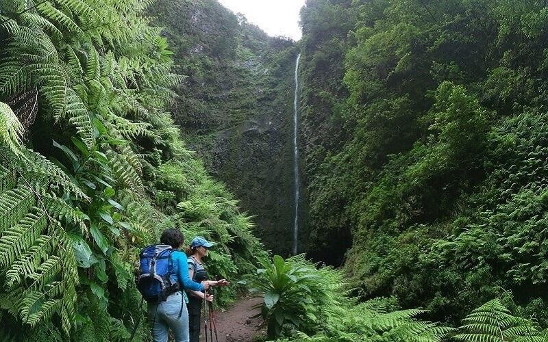 Levadas e Veredas, Madeira Adventure Kingdom